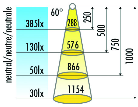 LED Anbauleuchtenset HALEMEIER SwanLite Leseleuchte 12 V