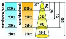 LED Einbauleuchten HALEMEIER SuperSpot 12 V