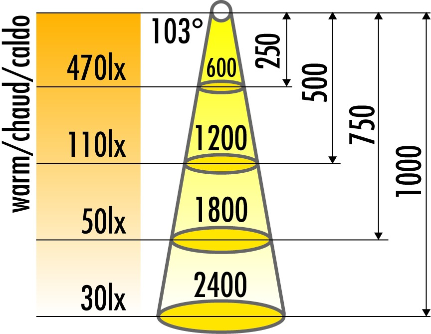 LED Anbauleuchten L&S Miniflat TLD, Leseleuchte 12 V