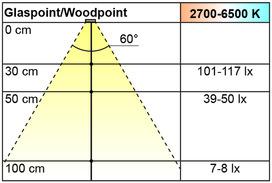 LED Ein-/Anbauleuchten L&S Emotion Woodpoint 12 V